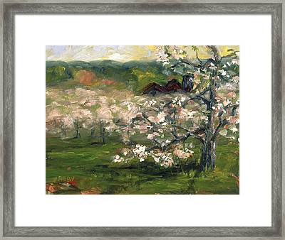 Sullivan's Orchard Framed Print