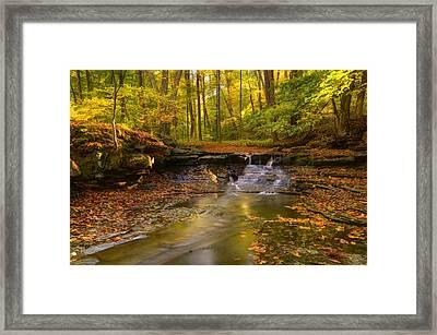 Sulphur Springs Two Framed Print by Ann Bridges
