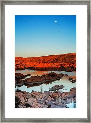 Sultry Summer Nights Framed Print