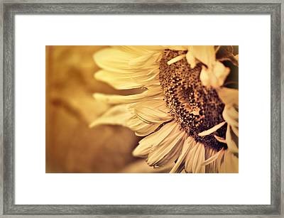Framed Print featuring the photograph Summer Afternoon by Douglas MooreZart