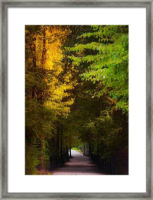 Summer And Fall Collide Framed Print