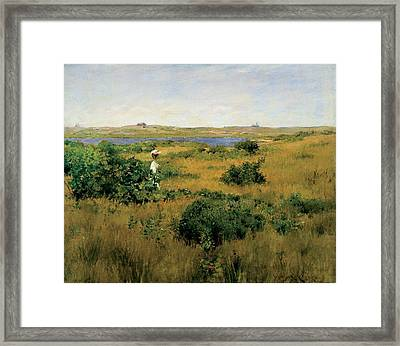 Summer At Shinnecock Hills Framed Print