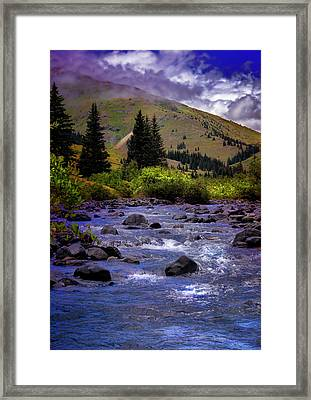 Framed Print featuring the photograph Summer At The Animas River by Ellen Heaverlo