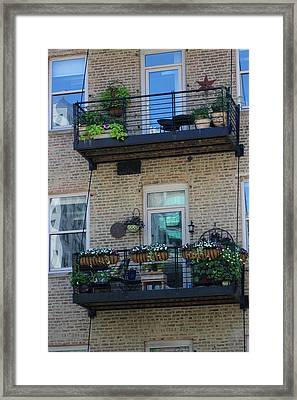 Summer Balconies In Chicago Illinois Framed Print