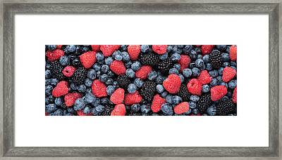 Summer Berries Panorama Framed Print