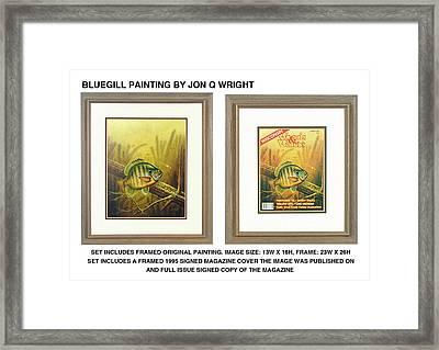 Summer Bluegill Framed Print