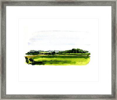 Summer Bog At Marstons Mills Framed Print