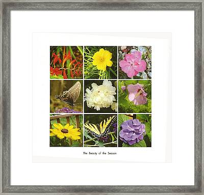 Framed Print featuring the photograph Summer Botanical Collage by Margie Avellino