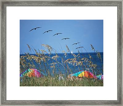 Summer Breeze Framed Print by Adele Moscaritolo