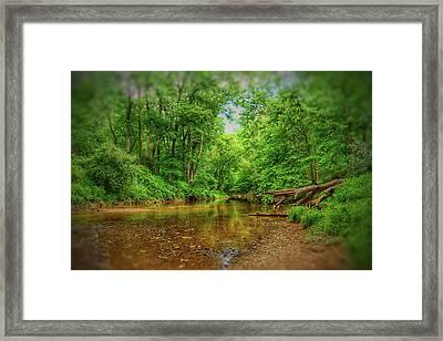 Summer Breeze II Framed Print