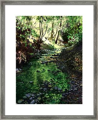 Summer Brook Framed Print