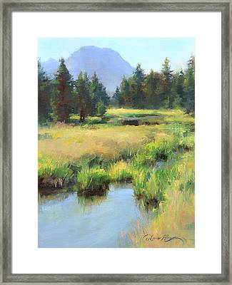 Summer Calm In The Grand Tetons Framed Print by Anna Rose Bain
