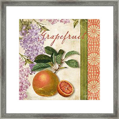 Summer Citrus Grapefruit Framed Print by Mindy Sommers