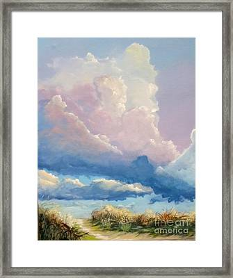 Summer Clouds Framed Print by John Wise