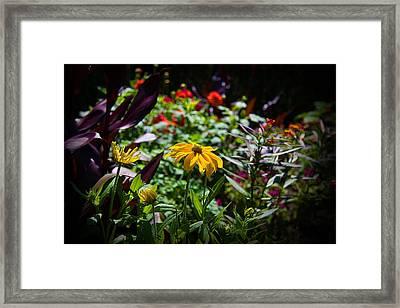 Summer Colors Framed Print by Milena Ilieva