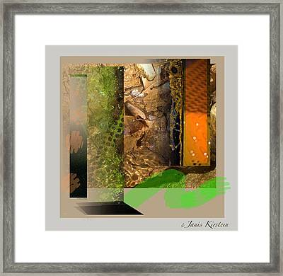 Summer Creek Framed Print