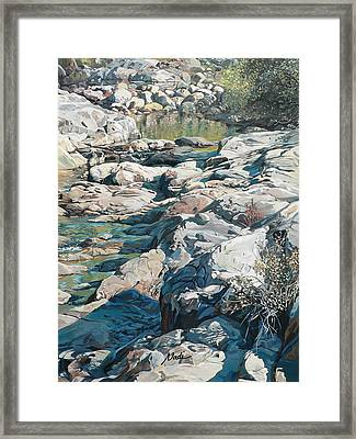 Summer Creek Framed Print by Nadi Spencer