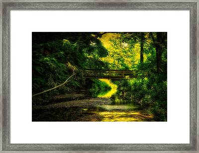 Summer Creek Framed Print by Thomas Woolworth
