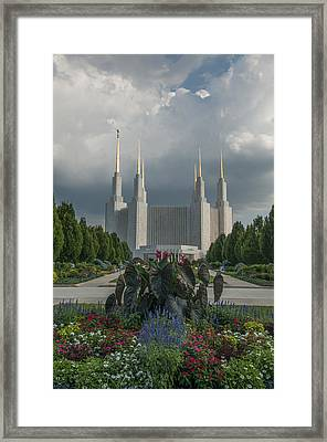 Summer Day At The Lds Framed Print