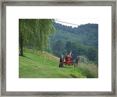 Summer Day Framed Print by Debbie Hall