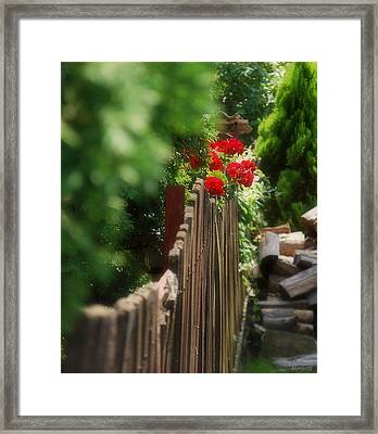 Framed Print featuring the photograph Summer Day... by Marija Djedovic