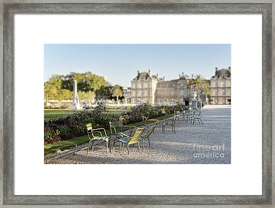 Summer Day Out At The Luxembourg Garden Framed Print