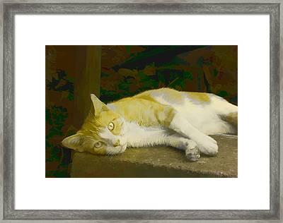 Summer Days 2 Framed Print by Michael Taggart II