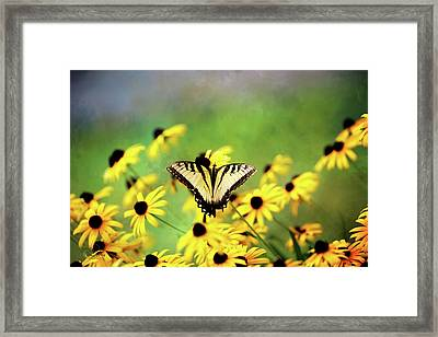 Summer Dream Framed Print by Theresa Campbell