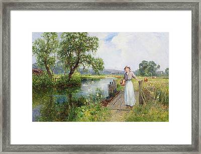 Summer Framed Print by Ernest Walbourn