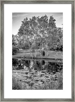Summer Evening 2 - Bw Framed Print by Steve Harrington