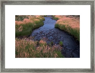 Summer Evening On Palouse River Framed Print by Jerry McCollum