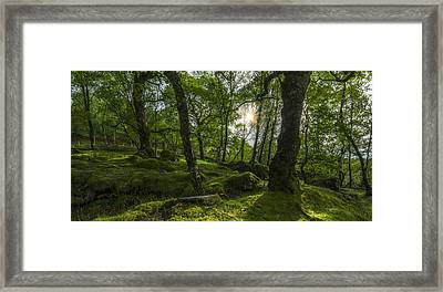 Summer Evenings In Wales Framed Print by Ian Mitchell