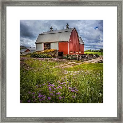 Summer Farm Framed Print by Debra and Dave Vanderlaan