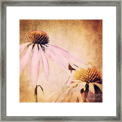 Summer Feeling Framed Print by Angela Doelling AD DESIGN Photo and PhotoArt