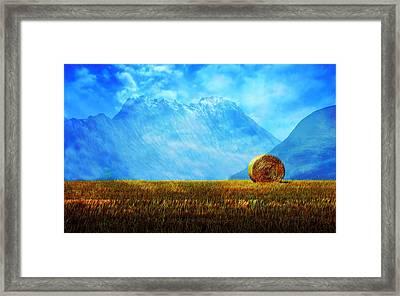 Summer Field Framed Print
