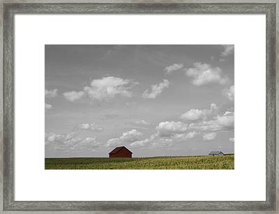 Summer Fields II Framed Print