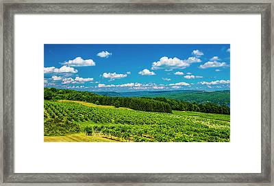 Framed Print featuring the photograph Summer Fields by Steven Ainsworth
