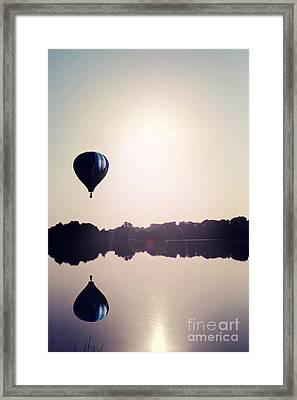 Summer Flight Framed Print