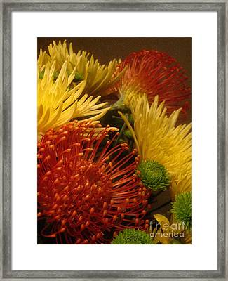 Framed Print featuring the photograph Summer Floral by Robert D McBain