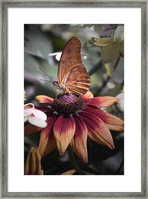 Summer Floral With Butterfly 03 Vertical Framed Print