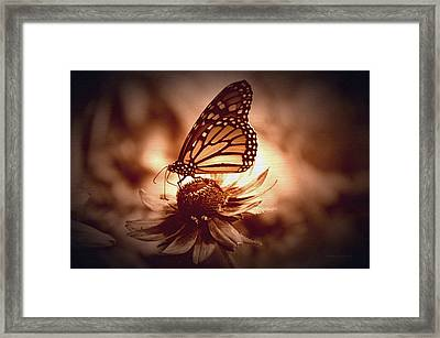 Summer Floral With Monarch Butterfly 01 Framed Print