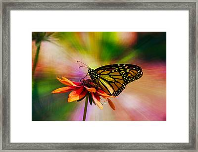 Summer Floral With Monarch Butterfly 03 Prism Framed Print