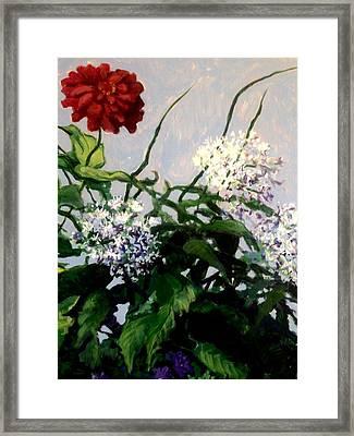 Summer Flowers 1 Framed Print