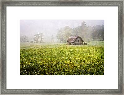Summer Fog Framed Print by Debra and Dave Vanderlaan