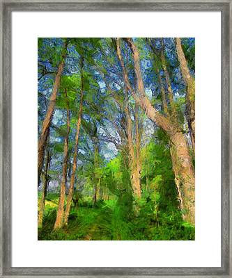 Summer Forest Painting Framed Print by Dan Sproul