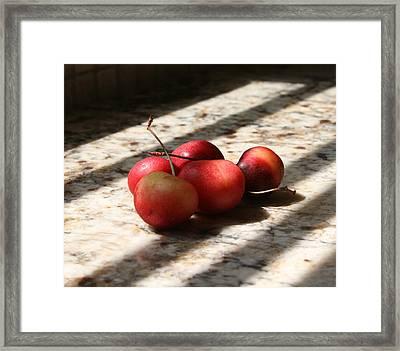 Summer Fruit Framed Print by Sherry Klander