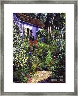 Summer Garden Framed Print by David Lloyd Glover