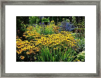 Summer Garden Framed Print by Debbie Oppermann