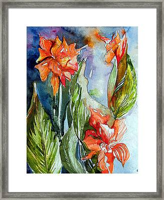 Summer Glads Framed Print by Mindy Newman