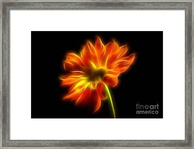Summer Glow Framed Print by Krissy Katsimbras